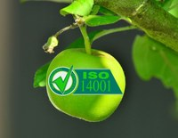 We got it! The ISO14001 certificate is ours!
