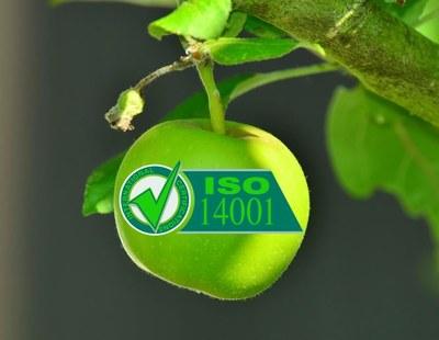 成功了!我们获得了ISO14001认证!